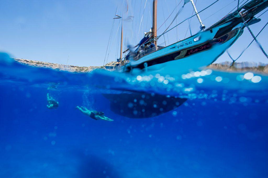 Daycharter Mallorca Flensburger Yacht Service